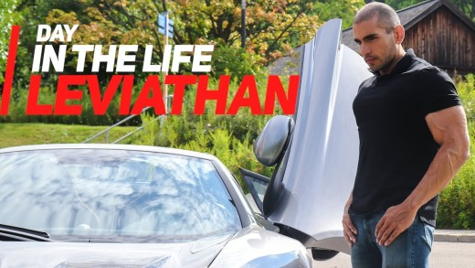 Day in the Life…. THE LEVIATHAN
